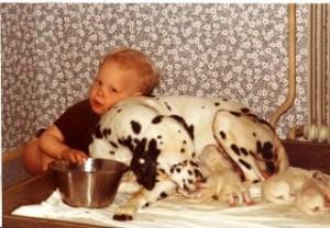 Oskar med Minnies (Boings Hermione) enda kull och med hans egen hund Annie (CH Cabmans Anisette)